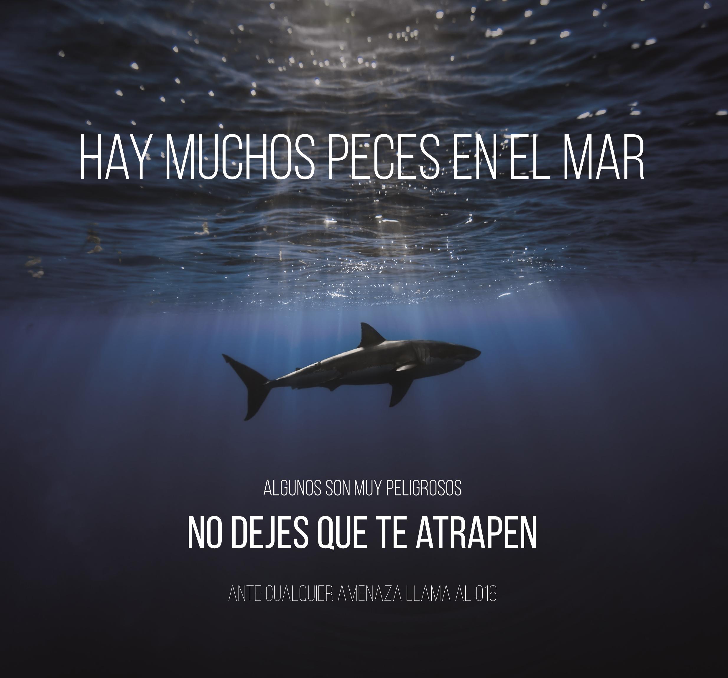 hay_muchos_peces_en_el_mar